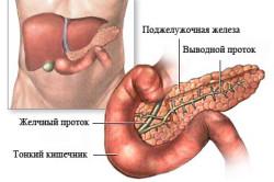 Панкреатит - причина атрофическиого гастрита