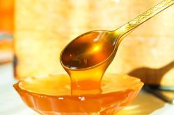 Лечение заболеваний желудка медом