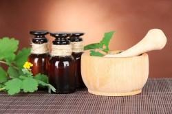 Применение настоя чистотела для лечения рака желудка