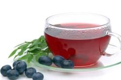 Отвар из ягод черники для лечения острого гастрита