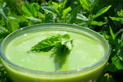Сок из листьев подорожника при заболеваниях желудка