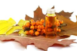 Польза облепихового масла при повышенной кислотности желудка