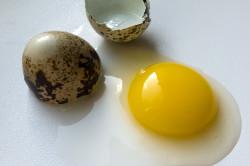 Польза желтка перепелиного яйца
