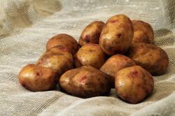 Использование неочищенного картофеля для приготовления сока