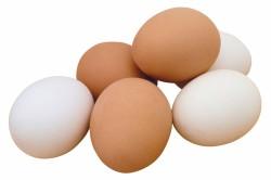 Польза куриных яиц при лечении гастрита